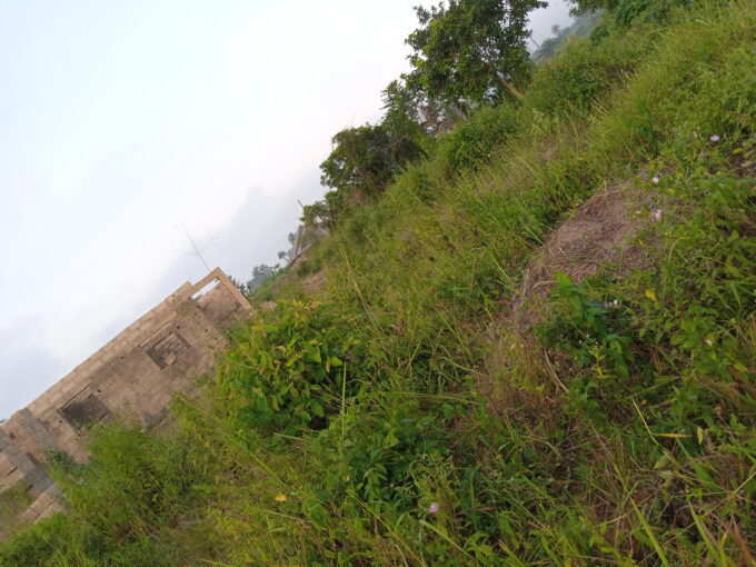 7 PLOT OF LAND FOR SALE AT SARIBI